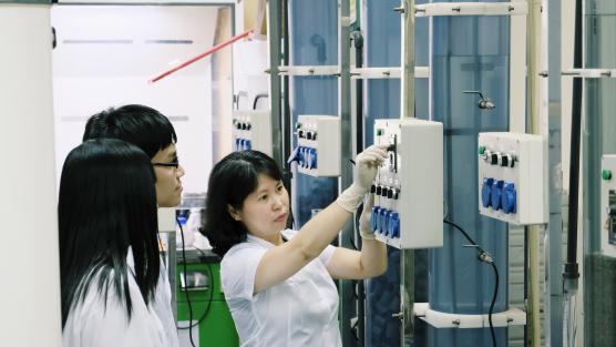 TS. Nguyễn Thị An Hằng, Giám đốc Chương trình Kĩ thuật Môi trường (MEE) nhận Bằng khen của Bộ trưởng Bộ Khoa học và Công nghệ